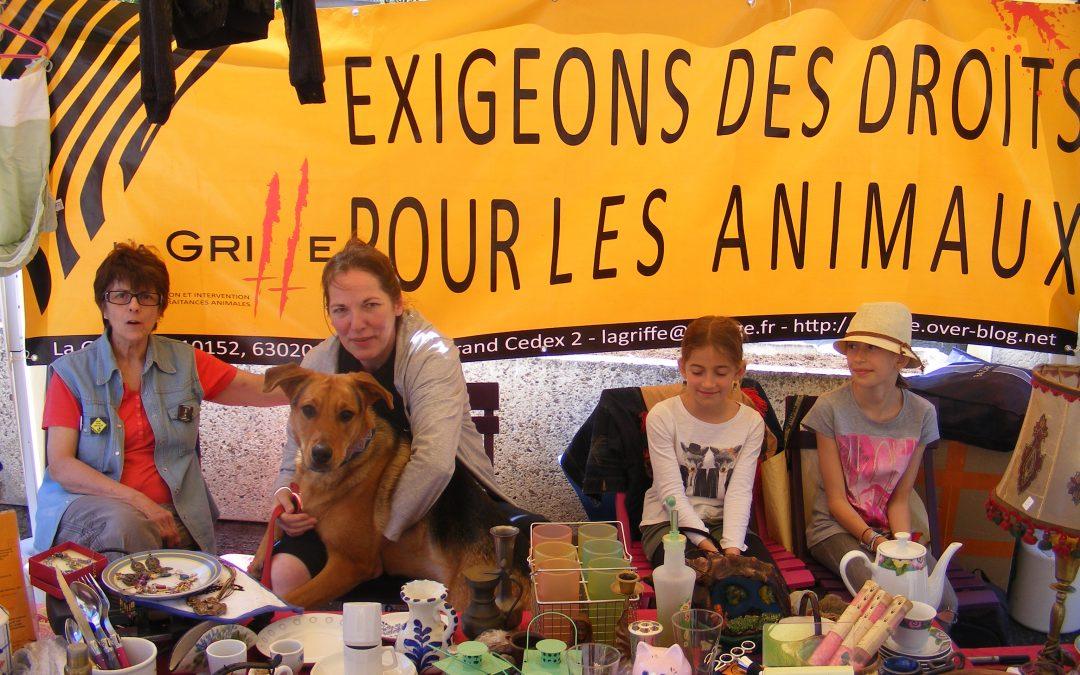 Mort de l'animal, animaux morts : du droit à la justice