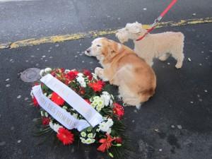 Le 11novembre 2014, un groupe de La Griffe avait déposé une gerbe au pied du monument aux morts...