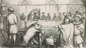 Lors des procès d'animaux au Moyen-âge les accusés avaient peu de chances de n'être pas condamnés.