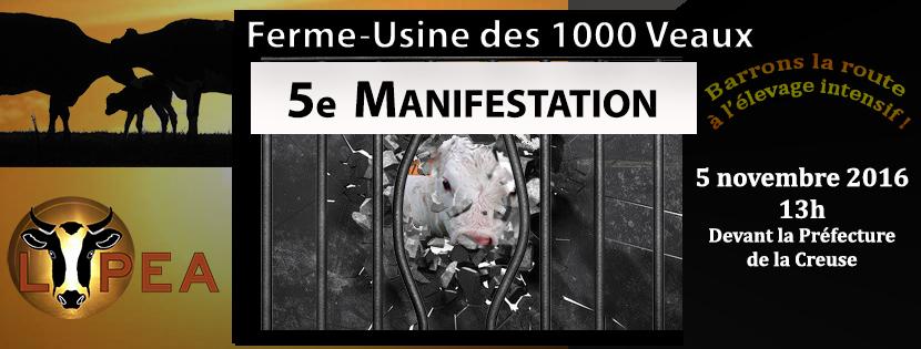 1000 veaux